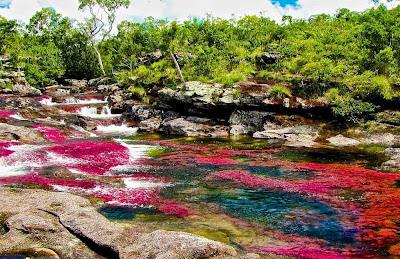 rio colorido da Colômbia