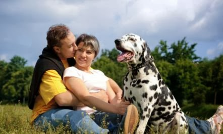 man woman dog dalmatian picnic - What I Learned About Dating from My Dog !!
