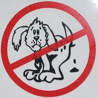 El excremento de los perros