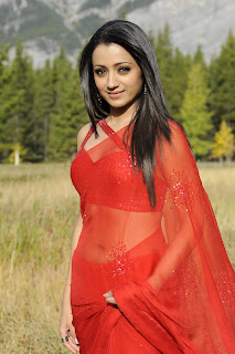 Trisha in Transparent Red Hot Saree Spicy Scenes from Body Guard Trisha