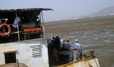 Flamingo Festival,16 April 2011,Sewri Jetty