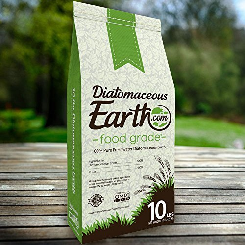 FOOD GRADE DIATOMACEOUS EARTH for YOU
