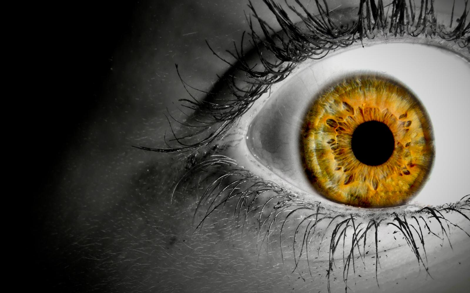 http://1.bp.blogspot.com/-yKFyJ0PA5Es/TmanEZ9A1aI/AAAAAAAAA04/vvx6oKiDTqs/s1600/selective_coloring_orange_eyes_www.Vvallpaper.net.jpg