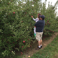 George Hill Orchards MA New England Fall Events