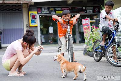 Nana Ogura Bali Dog