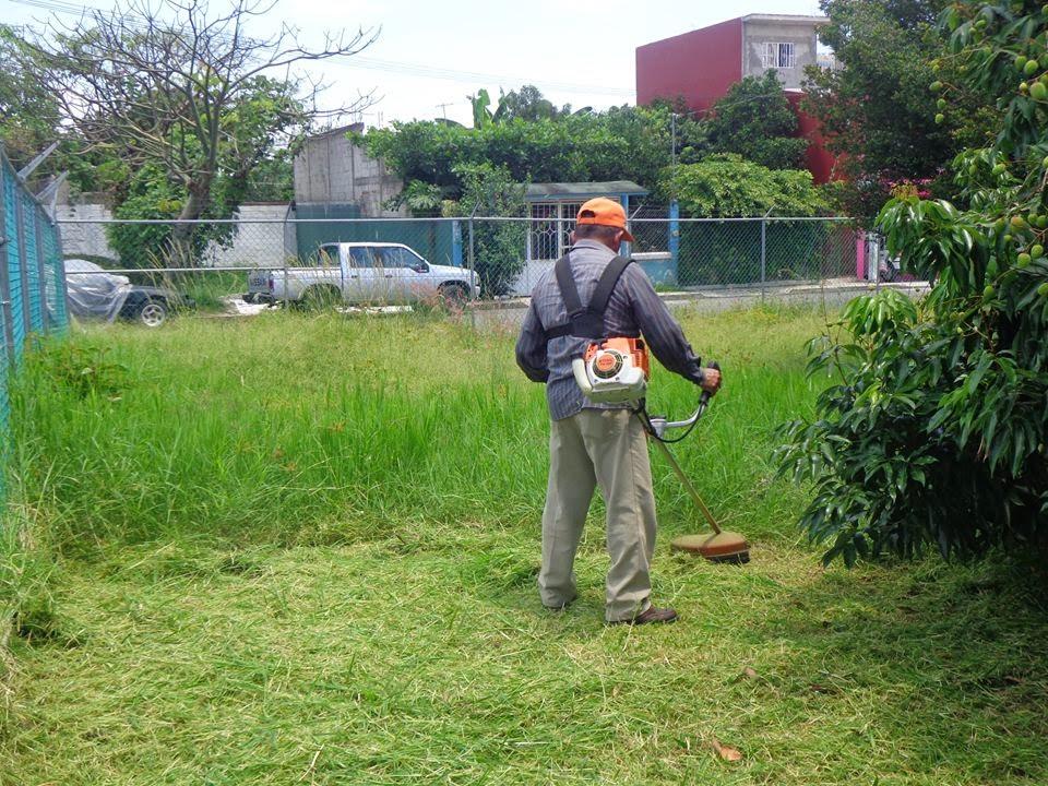 Importante la limpieza de parques y jardines en tlapacoyan for Limpieza de jardines madrid