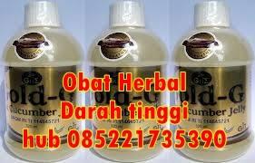 Obat Herbal Darah Tinggi Paling Ampuh