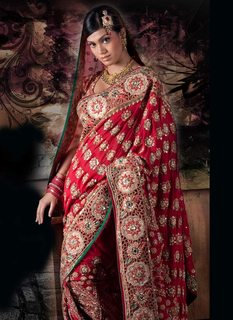 Bridal Mehndi Sarees : Mehndi design designs for hands
