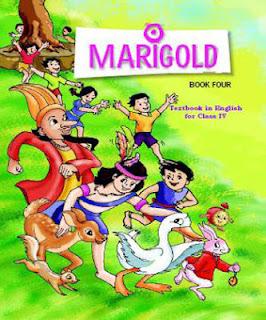 Marigold Class 4