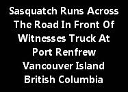 Sasquatch Runs Across The Road At Port Renfrew Vancouver Island B.C.