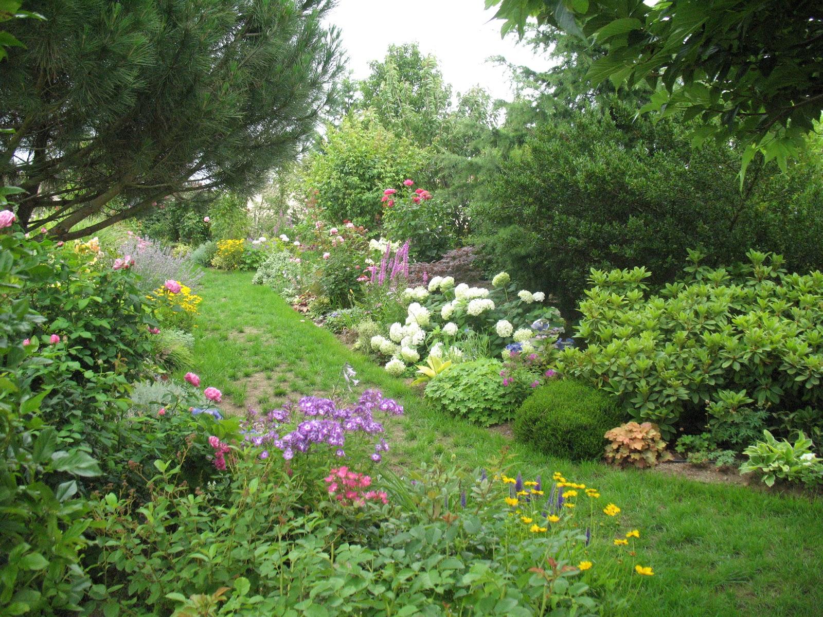 Roses du jardin ch neland le jardin au cours de la belle - Jardin de chen ...