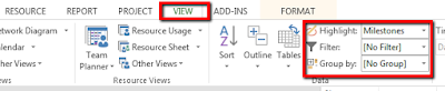 Filters, highlight and group options in MS Project