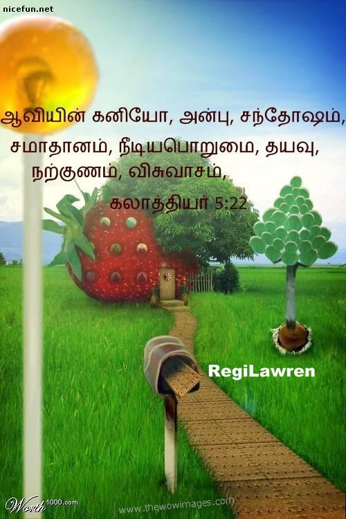 holy bible tamil software free download