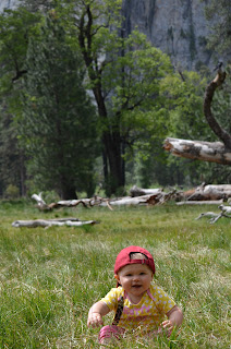 baby in a meadow
