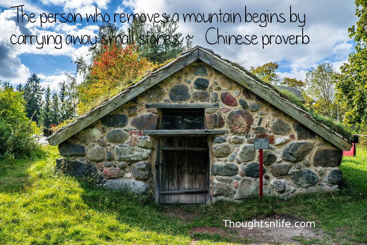 Thoughtsnlife.com: The person who removes a mountain begins by carrying away small  stones.  ~   Chinese proverb