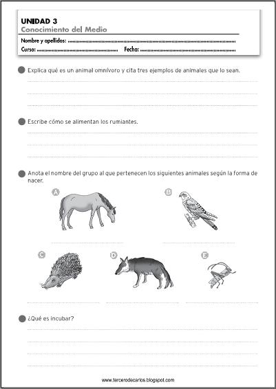 http://www.primerodecarlos.com/TERCERO_PRIMARIA/octubre/Unidad3/fichas/cono/cono6.pdf