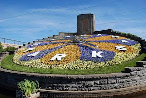 לחץ על תמונה זו על מנת לעבור לנושא שעוני פרחים בעולם