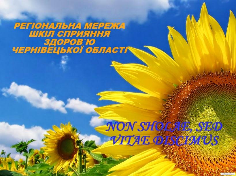 Регіональна мережа шкіл сприяння здоров`ю Чернівецької області