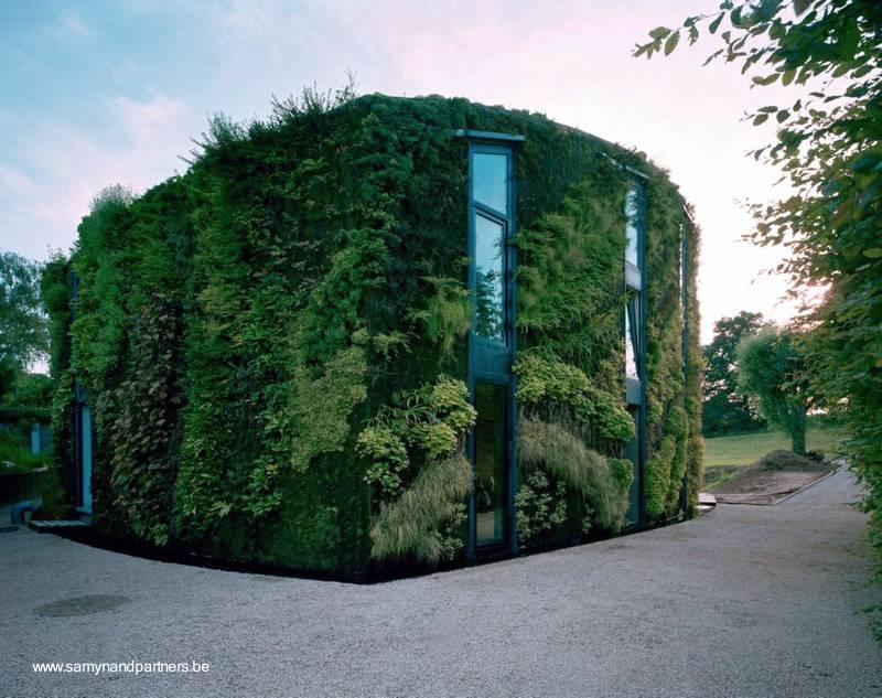 casa moderna cubierta por fuera con jardines verticales