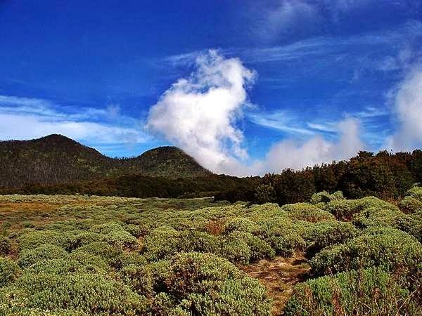Wisata Alam Gunung Papandayan