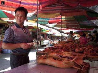 Hiii.. Besok Digelar Festival Menyantap Daging Anjing di Yulin Tiongkok, Siapa Yang Tertarik?