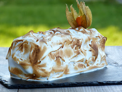 Chic chic chocolat b che de no l polonaise - Buche de noel facile et originale ...