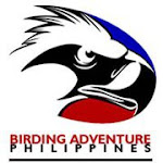 Birding Adventure Philippines