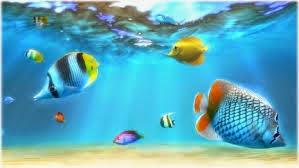 افضل الخلفيات المتحركة 3d لسطح المكتب برنامج Sim Aquarium