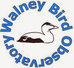 WALNEY BIRD OBSERVATORY
