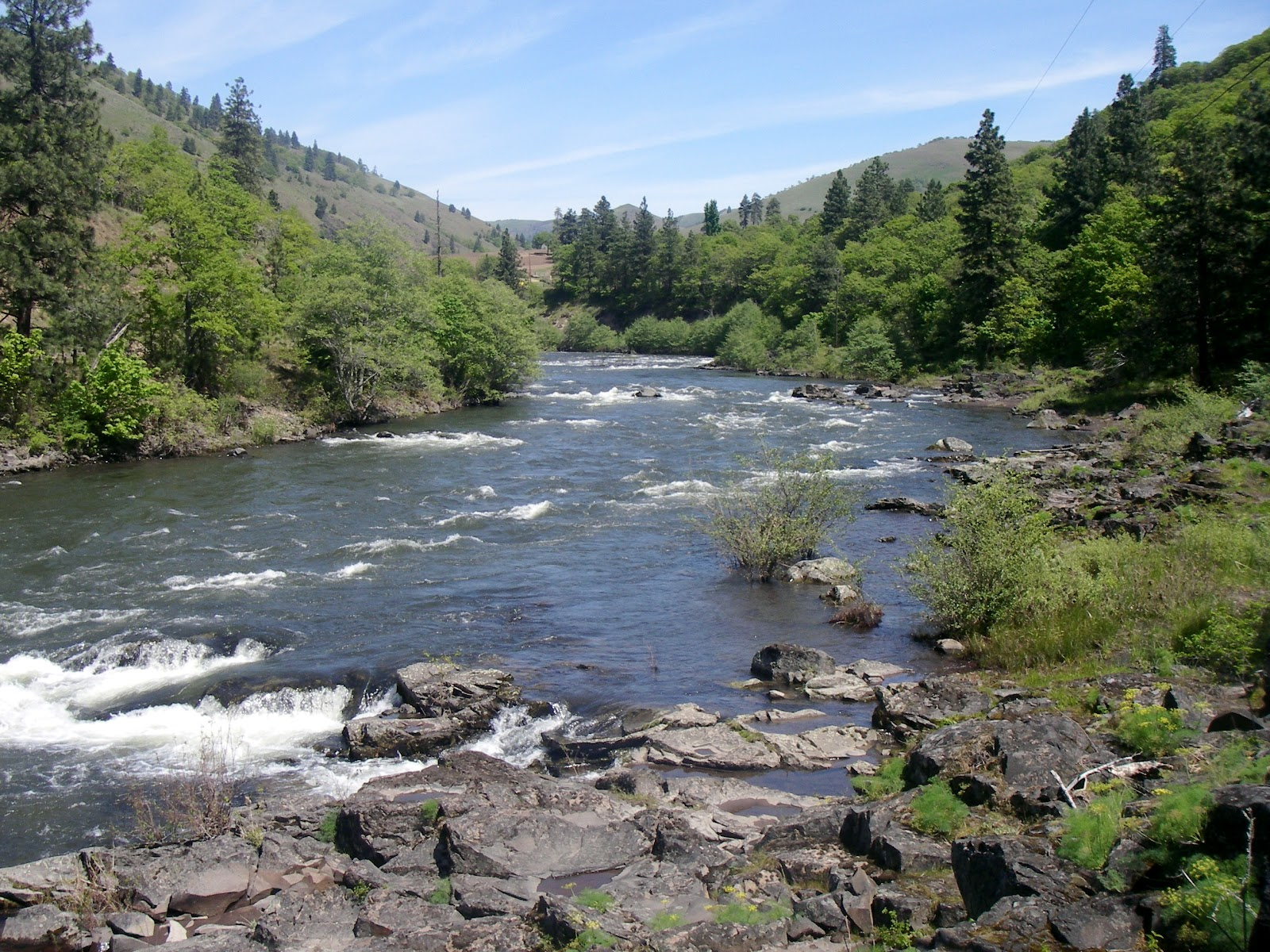 Steelhead underground for Washington river fishing reports