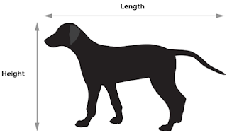 Dog's Size for Dog Carriers