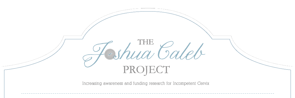 The Joshua Caleb Project