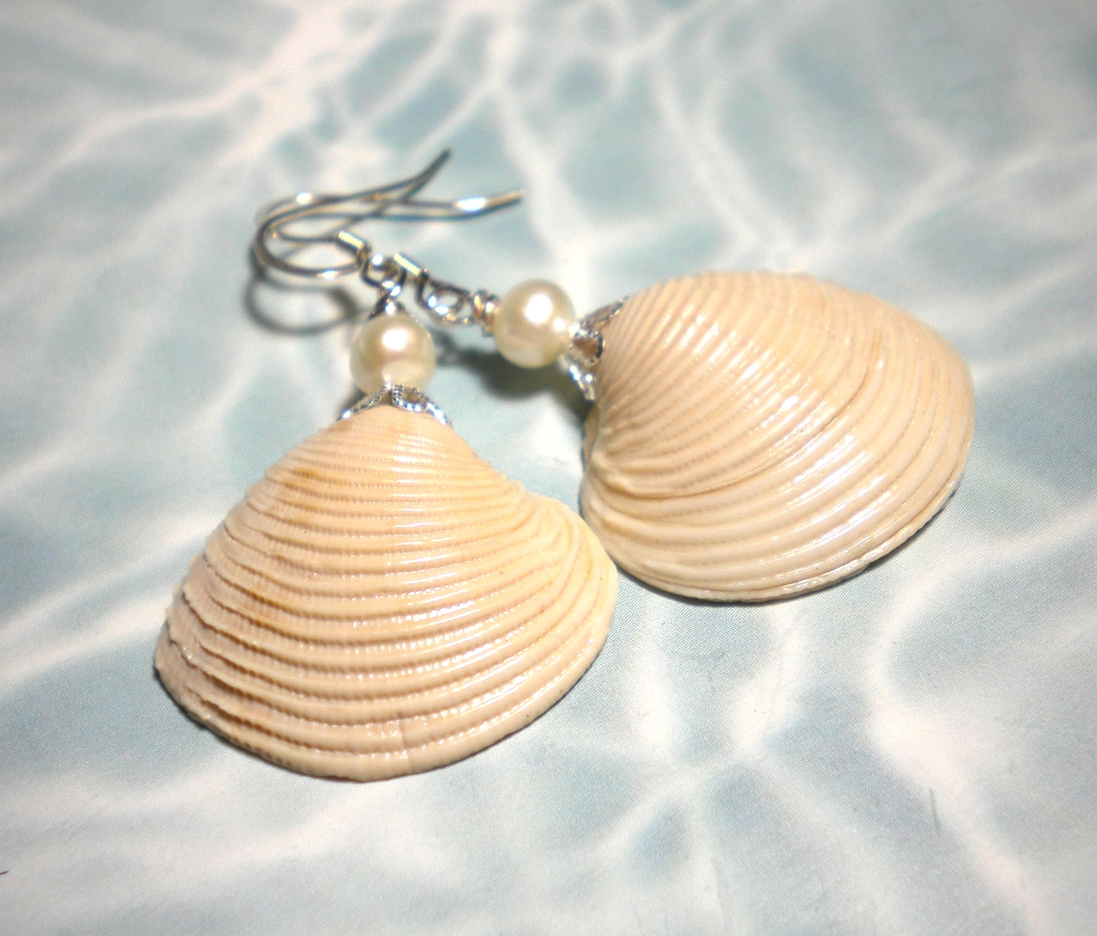 pin earrings seashell stud cast water