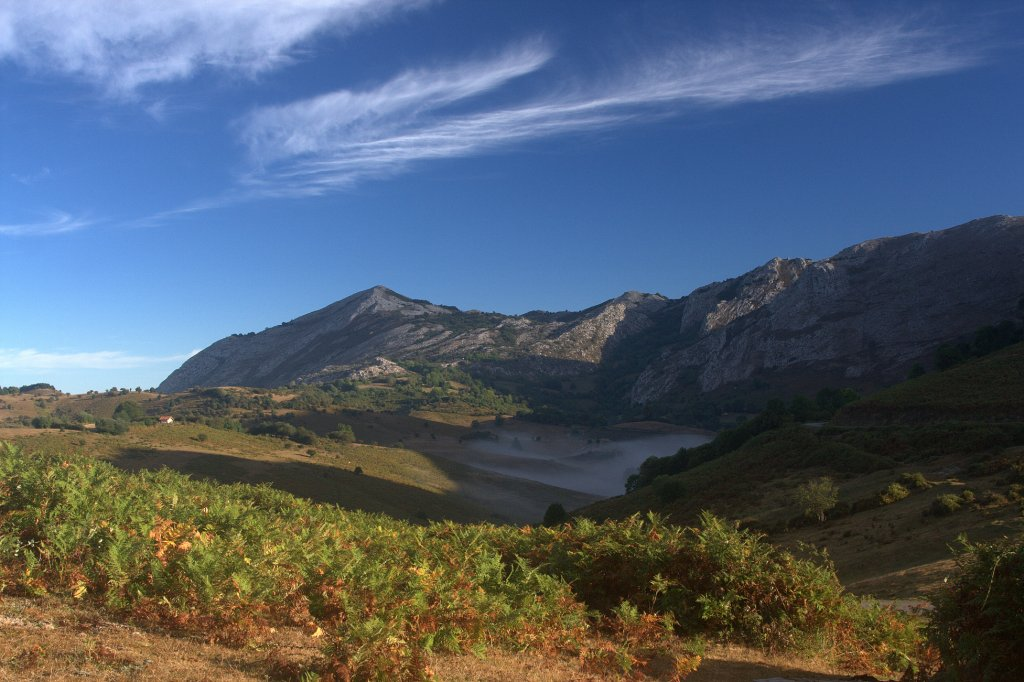 Naturaleza en asturias caldoveiru for Natural burguer mesa y lopez