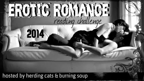 2014 Erotic Romance Challenge