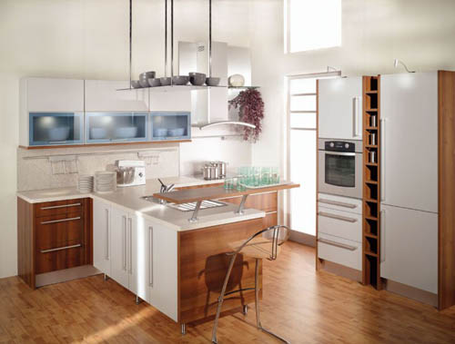 Small kitchen design ideas 2012 home interior designs for Small home kitchen ideas