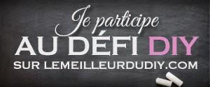 http://www.lemeilleurdudiy.com/les-defis-diy/