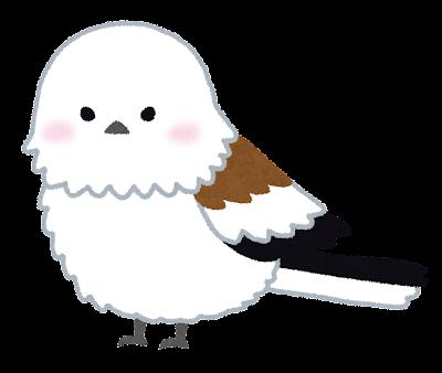 Bird shimaenaga
