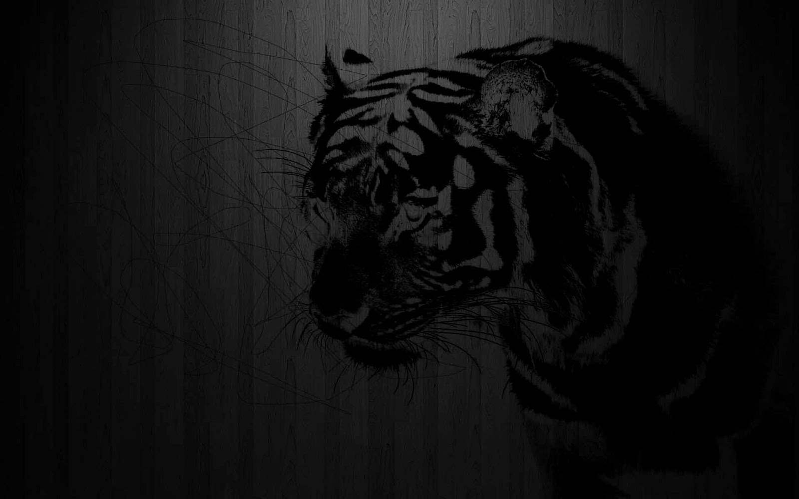 Black Color Wallpapers - 500 Collection HD Wallpaper