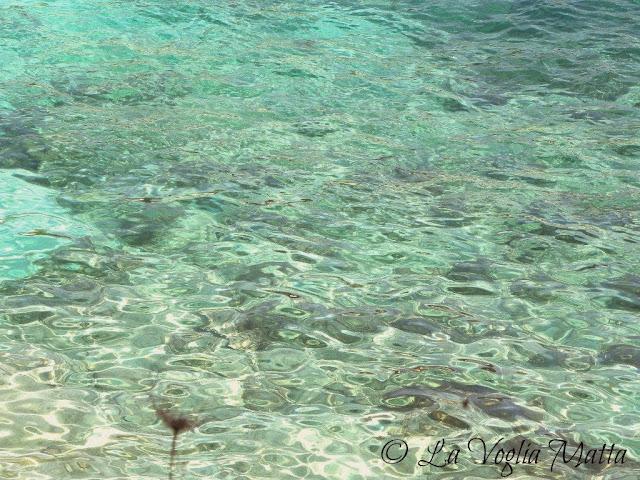 splendido mare di Cefalonia