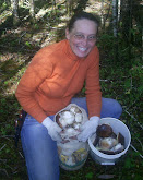 Fall Bolete Picking.