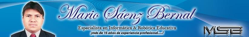 Mario Sáenz Bernal - Docente de Informática y Sistemas