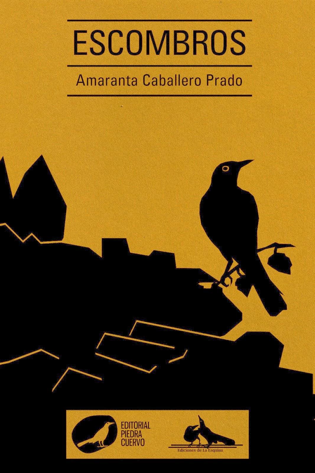 Escombros de Amaranta Caballero Prado