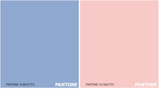 Pantone Color of the Year | 2016 | Chichi Mary Blog
