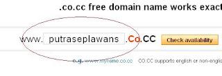 Memilih Nama Domain Co.Cc