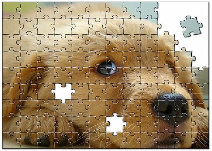 quebra-cabeça do cachorro