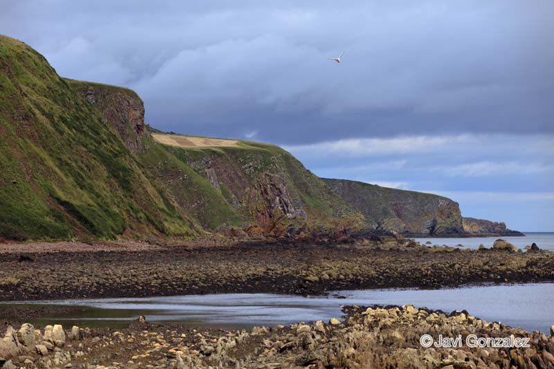 Este escocés, Escocia, 2012.
