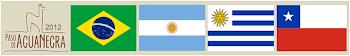Desafio 2012: Atacama & Paso de Agua Negra