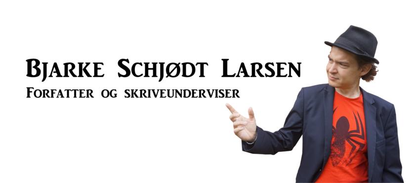 Bjarke Schjødt Larsen