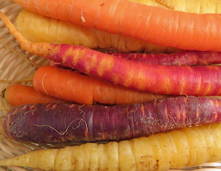 Basket of Orange, Purple, and Yellow Carrots